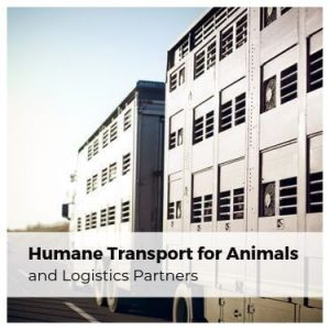 Humane Transport for Animals and Logistics Partners