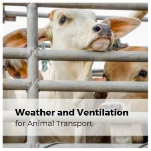 Weather and Ventilation for Animal Transport
