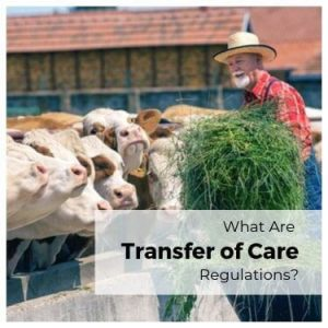 What Are Transfer of Care Regulations